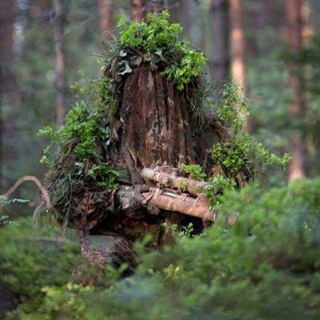 Война в лесу