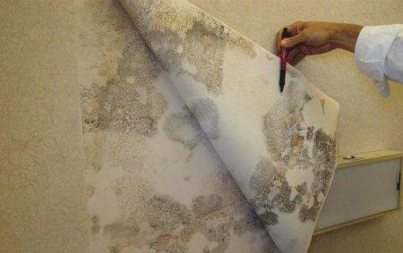 8 признаков того, что вам в квартире нужен ремонт